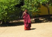 sri-lanka-122008-473