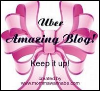 über Amazing Blog Award