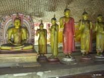 Sri Lanka 1.2.2008 018
