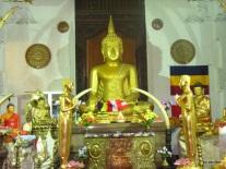 Sri Lanka 1.2.2008 180
