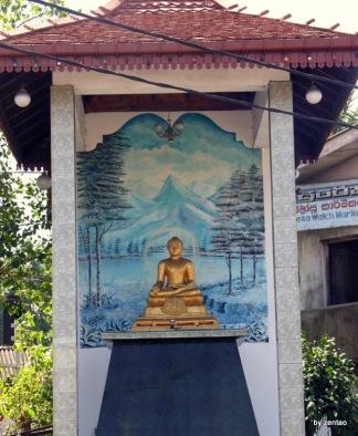 Sri Lanka 1.2.2008 446