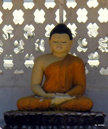 Sri Lanka 1.2.2008 483