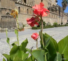 Sizilien 2009 310