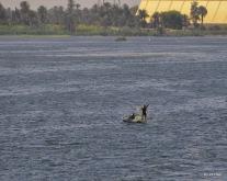 Fischer auf dem Nil