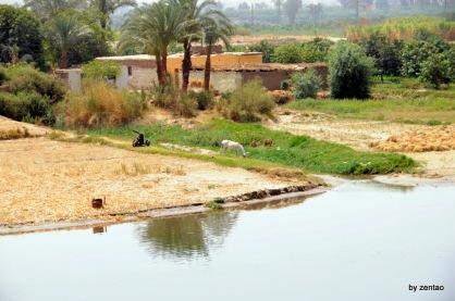 so leben die Bauern am Nil