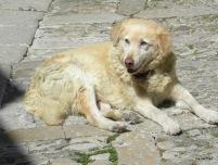 Sizilien 2009 346