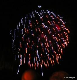 Feuerwerk Vevey 1.8.2005 002