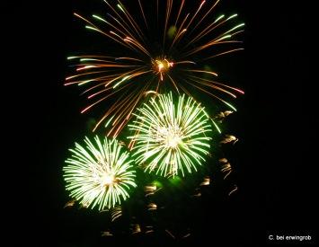 Feuerwerk Vevey 1.8.2005 005