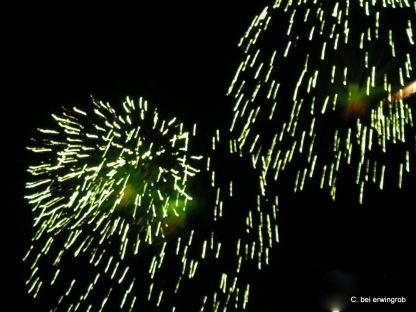 Feuerwerk Vevey 1.8.2005 009
