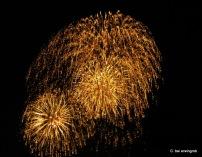 Feuerwerk Vevey 1.8.2005 030