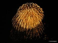 Feuerwerk Vevey 1.8.2005 033