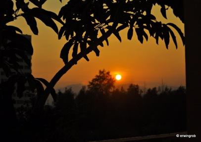 die Sonne geht gleich