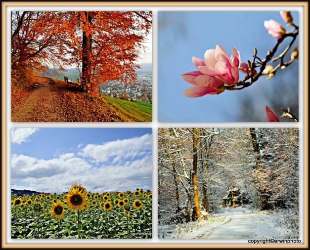 Vier Jahreszeiten - Die Welt ist schön