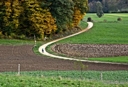 Folge Deinem Weg...
