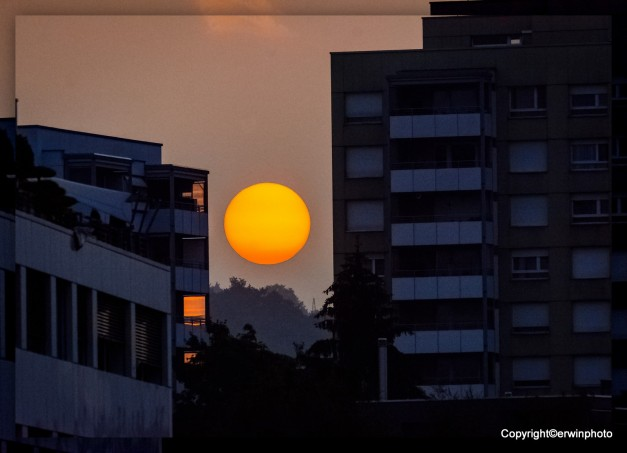 1-Morgensonne