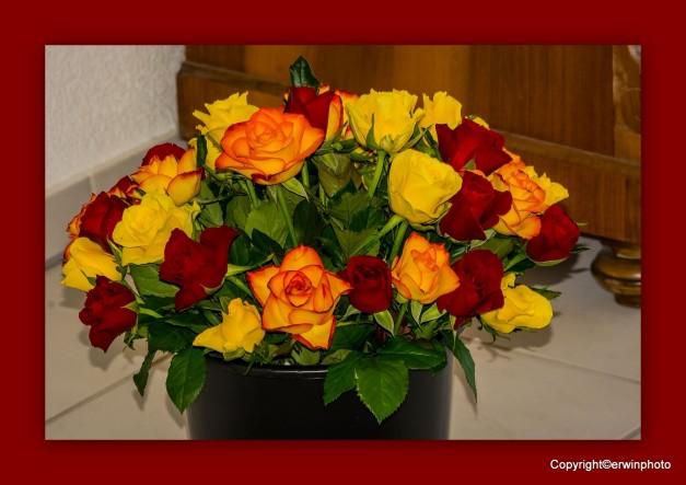 ein bunter Strauss Rosen