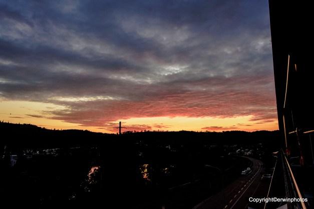 gestern auf meinem Balkon