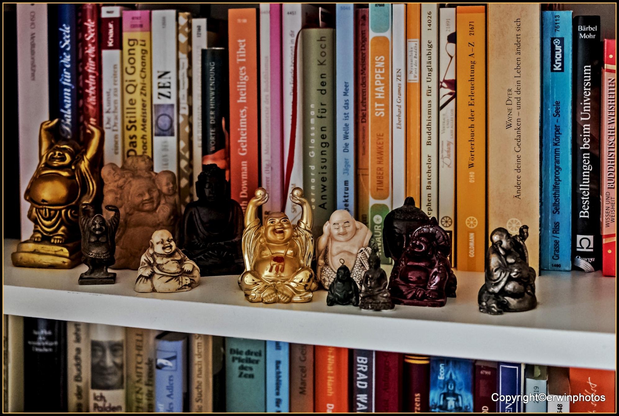 meine Buddhas