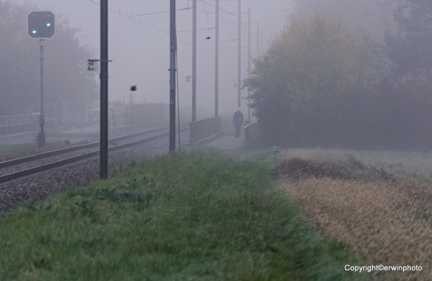 laufen im Nebel...