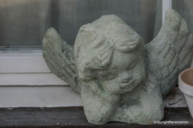 Ein Engel auf dem Fenstersims....