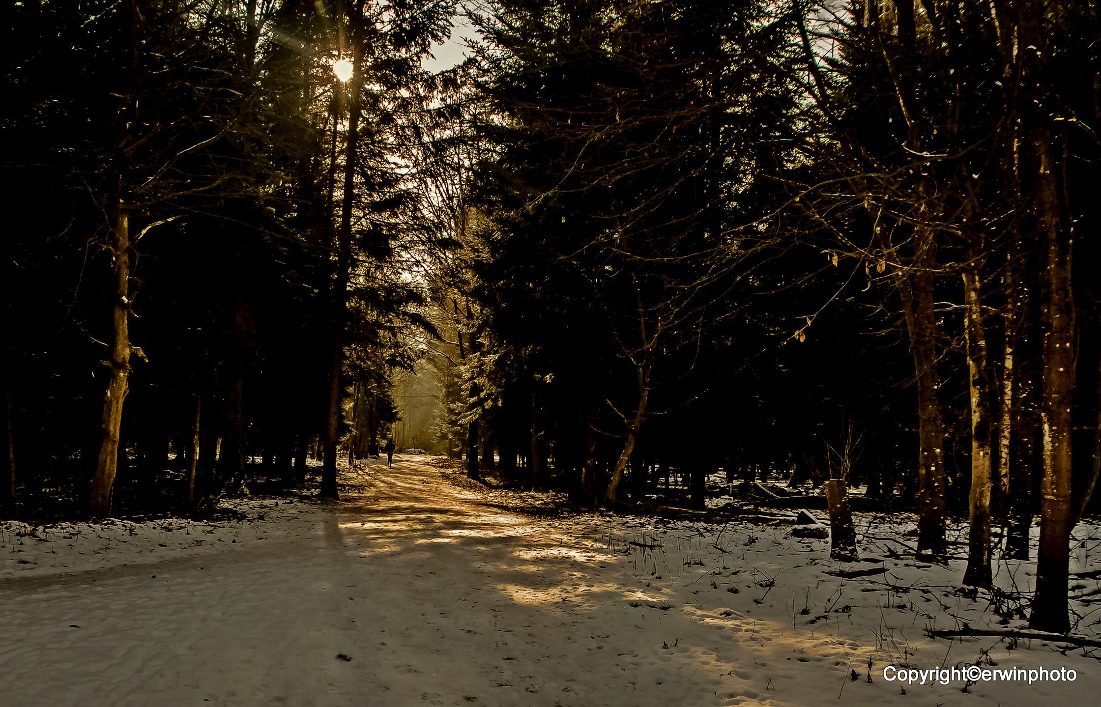 ein Winterabend 2015