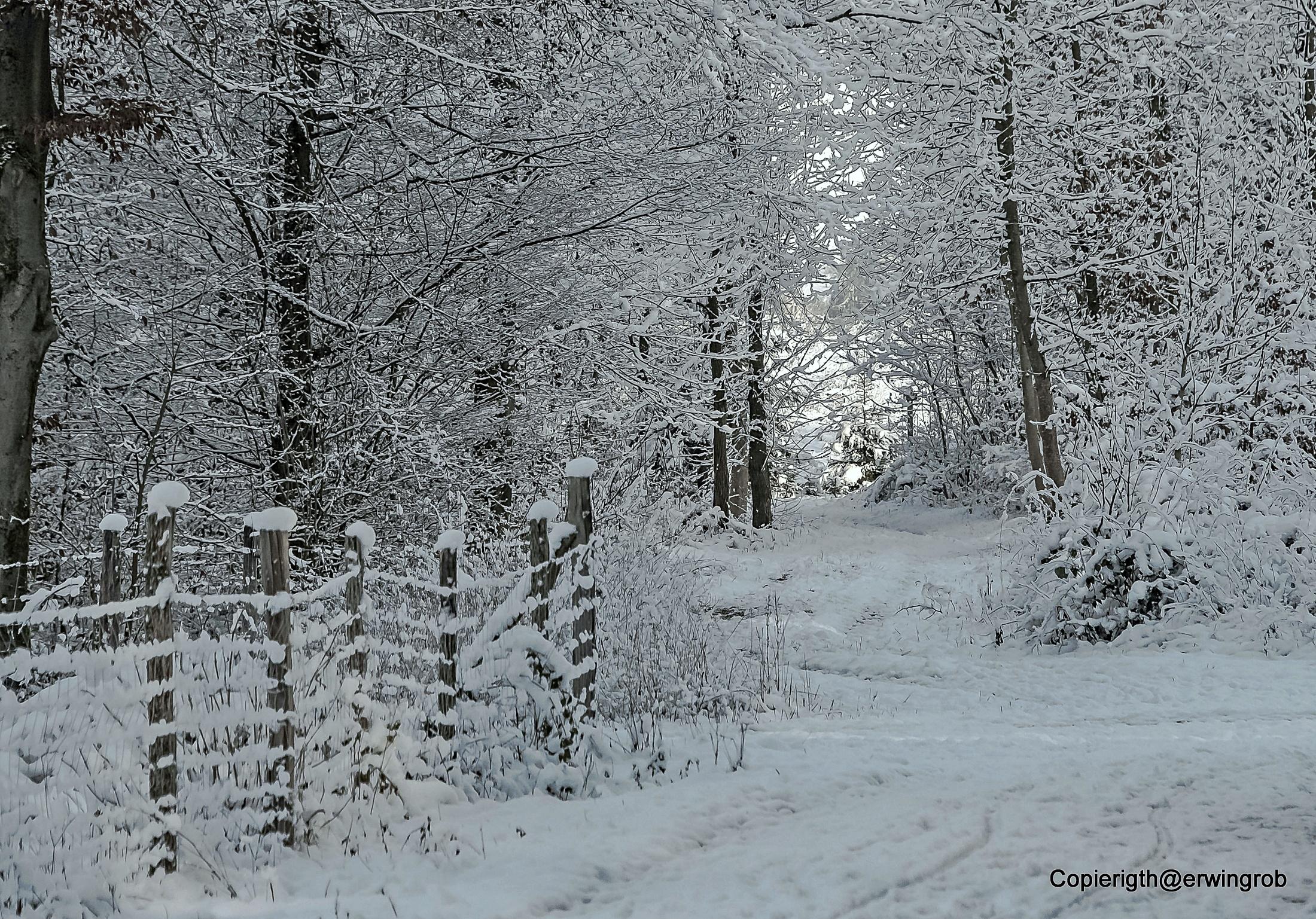 erster Gedanke: Neu Schnee