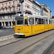 das gelbe Tram